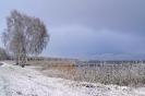 Winterliches Steinhuder Meer